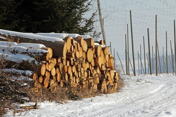 Holzstapel im Winter