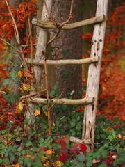 Holzleiter eines Jägerstandes