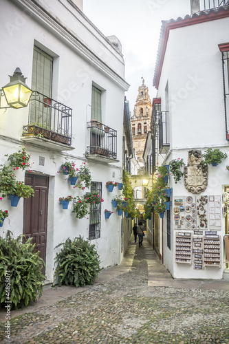 Calleja de las Flores en Córdoba - España