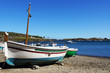 Catalan boat in Cadaques