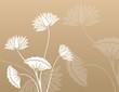 water lilies, Buddha , Zen , yoga, beauty, royal India