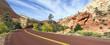 Zion road