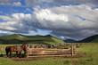 Orkhon idyllic landscape
