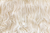 close up of sheepskin texture background