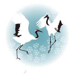 冬の鳥タンチョウヅル