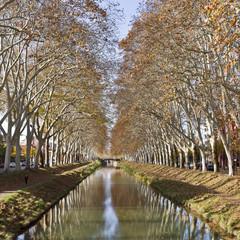 Canal de Brienne Automne à Toulouse