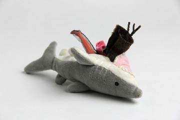 squalo con pancia piena