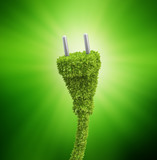 Grass covered electrical plug