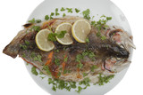 Grilled trout fillet on plate