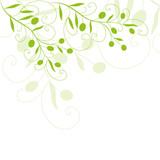 Fototapety floral, oliven,  olivenzweig,  olivenblätter, olivenöl,