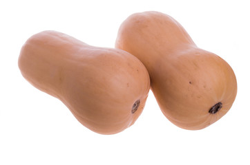 Two butternut squash isolated on white