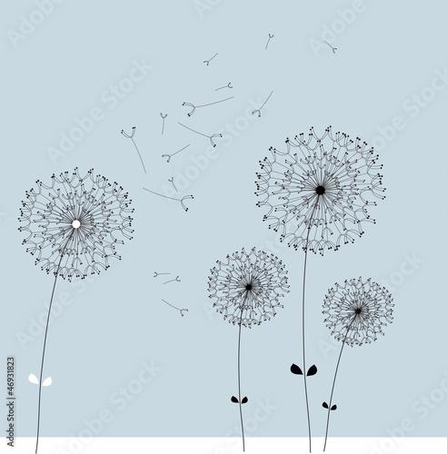 dandelion vector © creo77