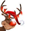 weihnachten muetze rudolf lichterkette rot