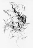 Sketch of tattoo art, fairy, fantasy illustration - 46937668