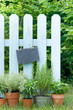 Herb garden, slate
