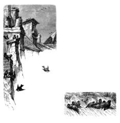 Page Ornament : Sparrows - Moineaux