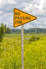 No Passing Zone Sign on Country Road in Summer