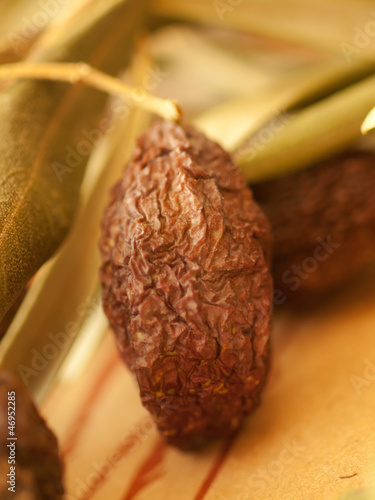 sun-dried olive fruit macro
