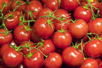 Fresh ripe cherry tomatoes