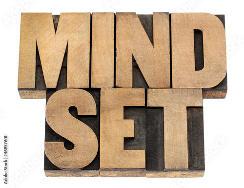 mindset in wood type