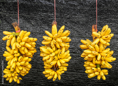 poster of Pisang Mas banana or Musa (AA group) Kluai Khai banana