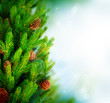 Christmas Tree Border Design over Green Blurred background