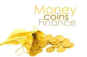 Money coins in golden bag isolated on white