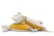 Mazorcas de maíz con su vaina aisladas sobre fondo blanco