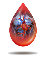Human Heart Blood Drop
