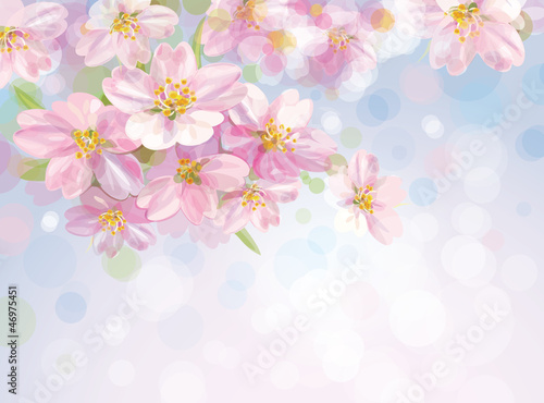 Vector of sping blossoming  tree with sky background