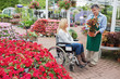 Woman in wheelchair buying a plant