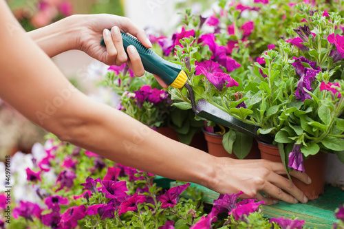 Woman spading flowers