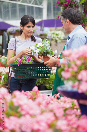 Woman with basket buying plants