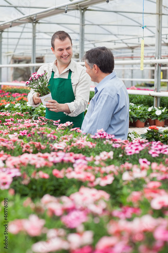 Worker showing customer a flower in greenhouse
