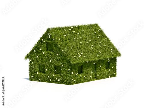 Haus 3D Gras
