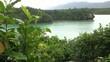 Tropical Island View (Okinawa, Japan)