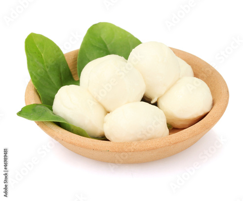 cheese mozzarella with green basil in the clay plate isolated