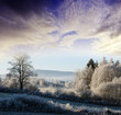 a winter morning with a sunrise - frozen landscape