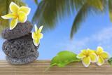 décor zen voyages exotisme détente