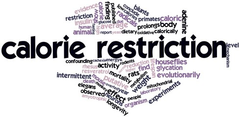 Word cloud for Calorie restriction