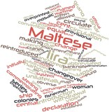 Word cloud for Maltese lira
