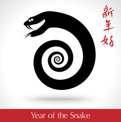 Year of the Snake 2013, vector illustration