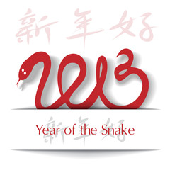 Year of the Snake 2013 applique background
