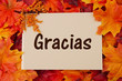 Gracias card with fall leaves