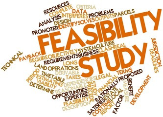 Word cloud for Feasibility study