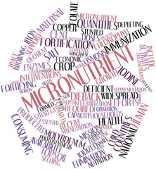 Word cloud for Micronutrient