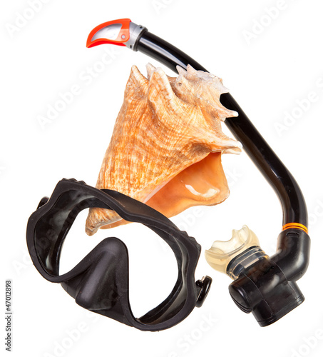 Big sea shell and equipment for diving (snorkel)