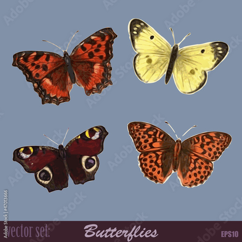 Vector Set Butterflies