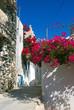 obraz - Street in Pyrgos, ...