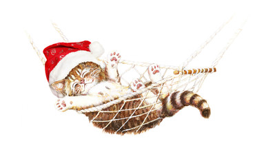 Kätzchen mit Weihnachtsmütze schläft in Hängematte